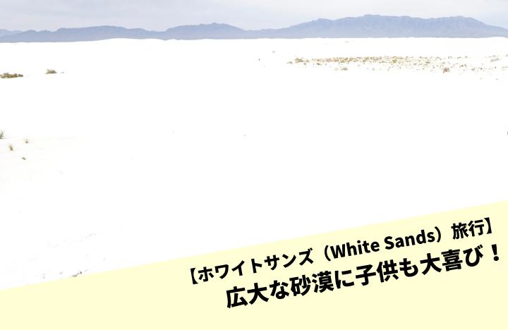 【ホワイトサンズ(White Sands)旅行】広大な砂漠に子供も大喜び!