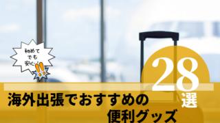 海外出張でおすすめの便利グッズ28選!【2019年版】アイキャッチ
